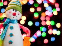 Happy Holidays from PLSA!